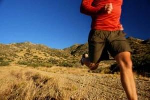 Deep Tissue Therapeutic & Sports Massage